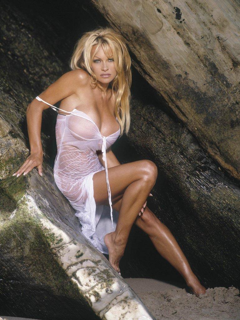 Посмотреть бесплатно порно клипы памелы андерсон 24 фотография