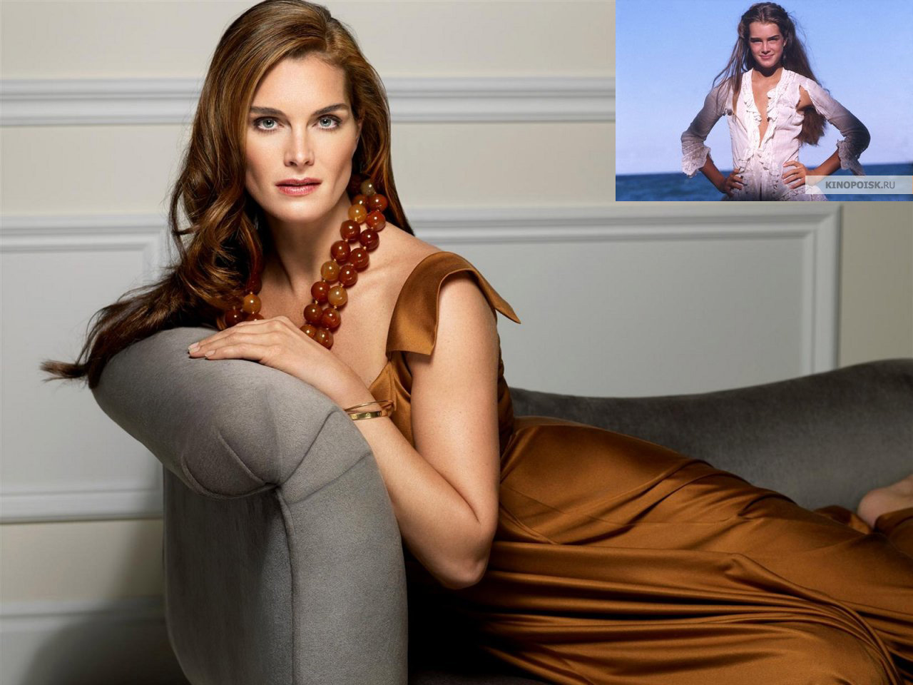 Брук Шилдс ( Brooke Shields )