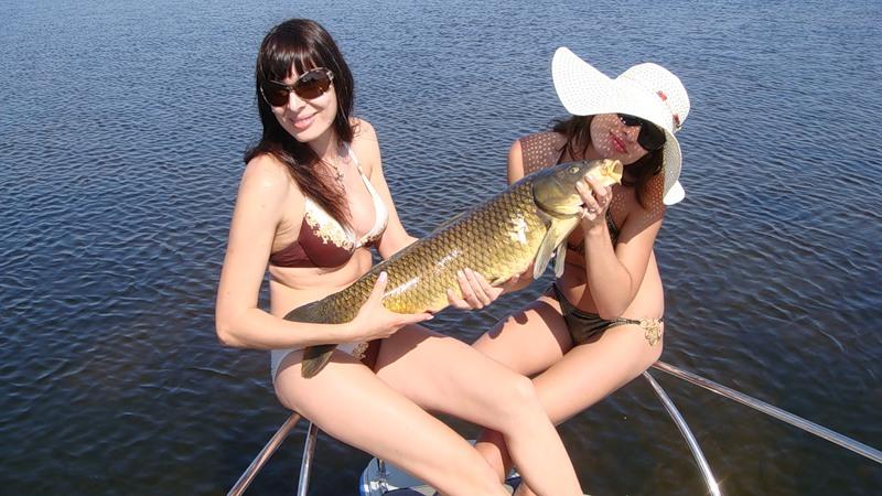 прикормки и насадки для рыбалки купить